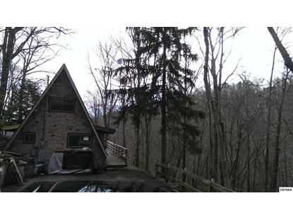 1131 Alpenrose Rd., Gatlinburg, TN