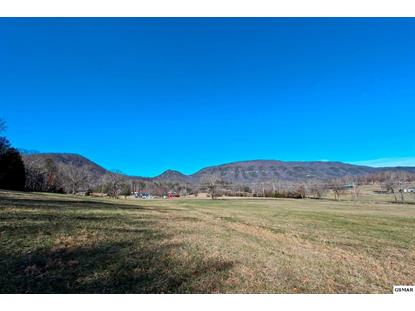 22 ACRES BOGARD RD, Cosby, TN