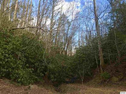 34 Acres Branam Hollow Rd, Gatlinburg, TN