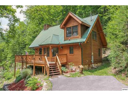 3138 N Clear Fork Rd, Sevierville, TN