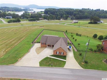 311 Pocahontas Lane, Rutledge, TN