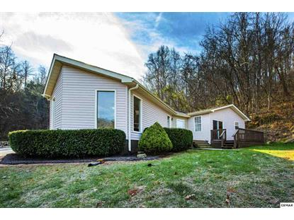 508 Lewis Lane Blaine, TN MLS# 219866