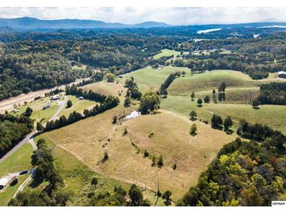 Jim Henry Road Dandridge, TN MLS# 220139