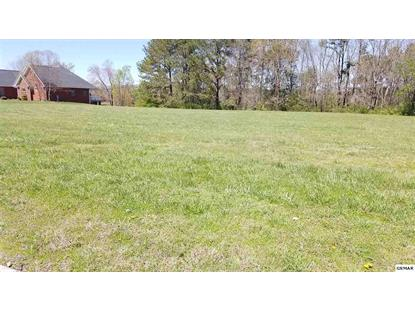 Lot 46 Big Oak Drive Dandridge, TN MLS# 220153
