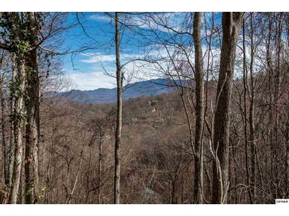Lot 9 Lot 10 Bavarian Way, Gatlinburg, TN