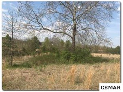Lot 1 Old Newport Highway  Sevierville, TN MLS# 224061