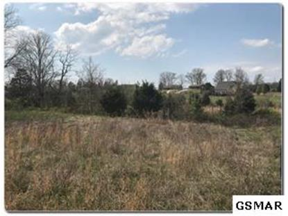 Lot 2 Old Newport Highway  Sevierville, TN MLS# 224062