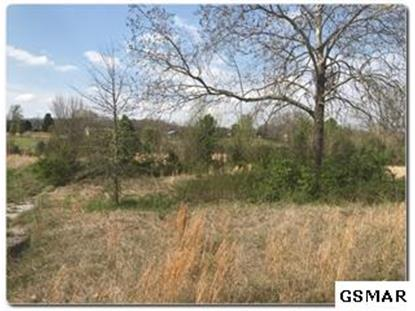Lot 5 Old Newport Highway  Sevierville, TN MLS# 224063