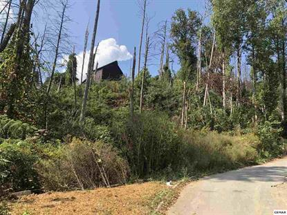 PARCEL 004.00, 005.00 VILLAGE DRIVE JUST OFF E PARKWAY Gatlinburg, TN MLS# 225066