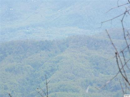 GREEN TOP ROAD Sevierville, TN MLS# 229063