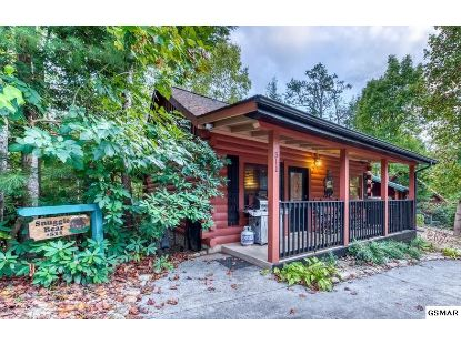 511 Hoot Owl Way Gatlinburg, TN MLS# 229580