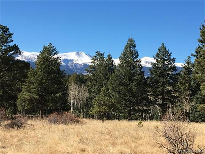 33391 Buffalo Park Road, Evergreen, CO 80439