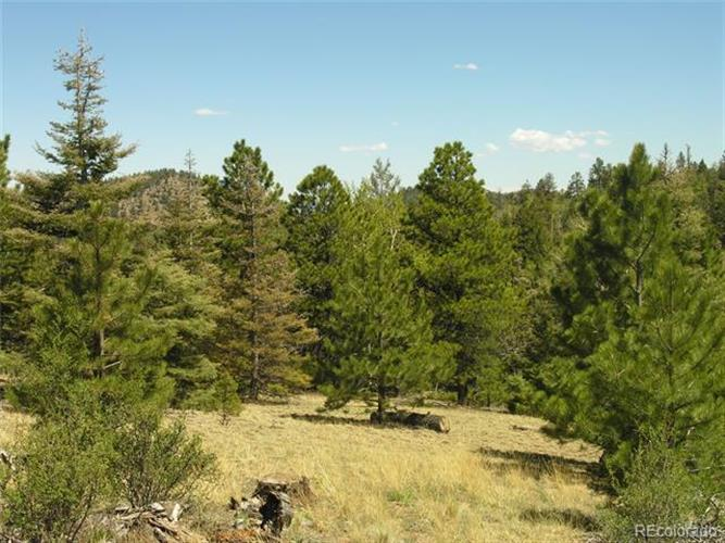 Lot 28 Copper Mountain Roads, Cotopaxi, CO 81223