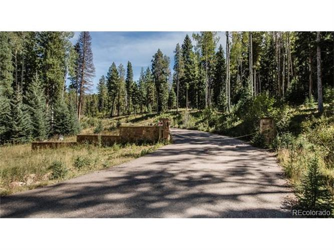 28650 Belle Pointe Drive, Conifer, CO 80433