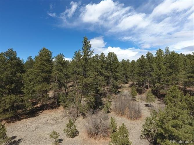 11285 East Caribou Drive, Franktown, CO 80116