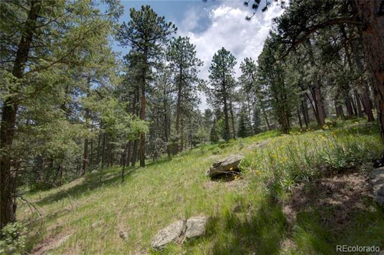 5325 Hatch Drive, Evergreen, CO 80439
