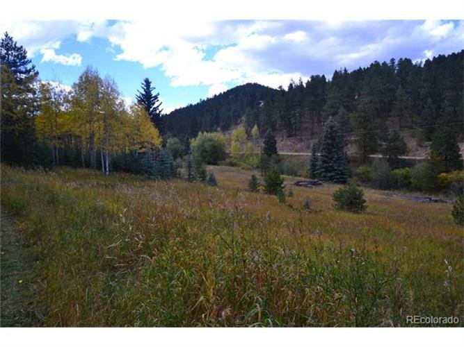 7569 WHISPERING BROOK Trail, Evergreen, CO 80439