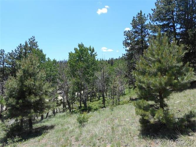 30269 EAGLES Ridge, Buena Vista, CO 81211