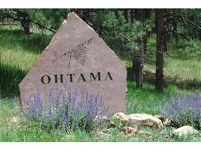 4437 OHTAMA DR, Evergreen, CO