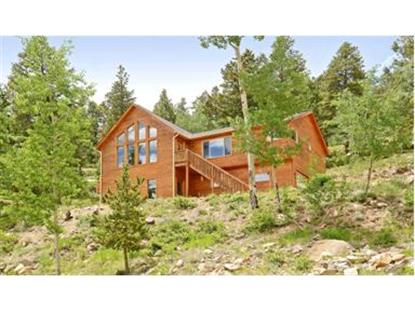 11593 BRAUN WAY, Conifer, CO
