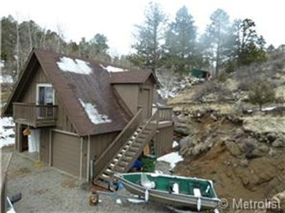 388 BOBCAT Trail, Bailey, CO