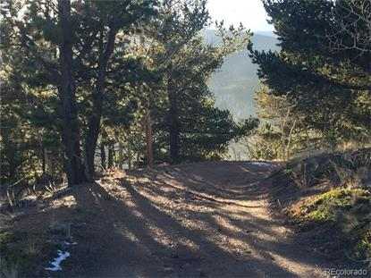 Park County 69 Road Bailey, CO MLS# 2338124
