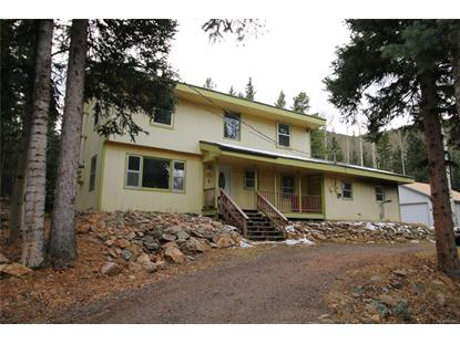 88 Valley View Drive Idaho Springs, CO MLS# 2935913