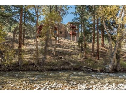 21942 Hancock Lane Nathrop, CO MLS# 4480117