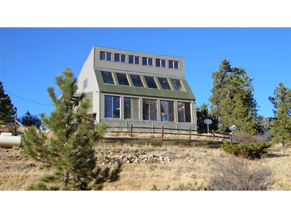 141 Elk Circle Guffey, CO MLS# 4559529