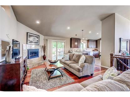 7953 Eagle Feather Way, Lone Tree, CO
