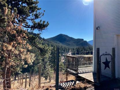 483 Crow Valley Road Bailey, CO MLS# 4784925