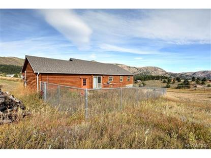 1886 Palisade Mountain Drive, Drake, CO