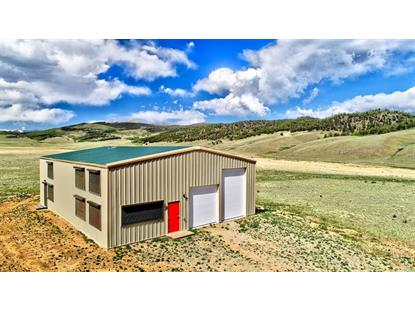 1445 Snyder Creek Road Jefferson, CO MLS# 5451323