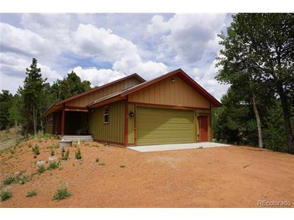 1131 Pikes Peak Drive, Divide, CO