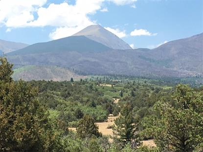 0 Cottonwood Trail Cotopaxi, CO MLS# 6452853
