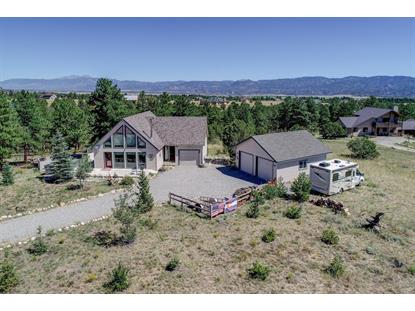 13351 County Road 261J  Nathrop, CO MLS# 6723540