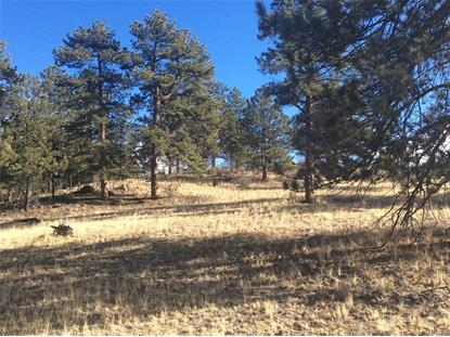 County 77 Road Lake George, CO MLS# 7253404