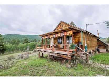 70 Fawn Drive Bailey, CO MLS# 7593916