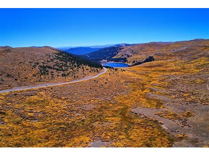 12356 Guanella Pass Road Georgetown, CO MLS# 8335164