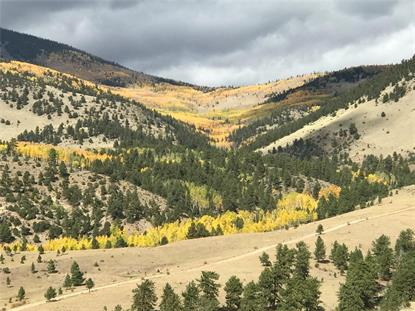 County Road 169A  Cotopaxi, CO MLS# 8469674