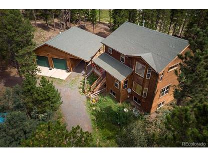 10 Shoshoni Way, Nederland, CO