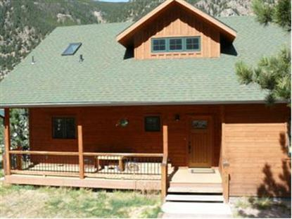 1785 SKYLINE DR, Georgetown, CO
