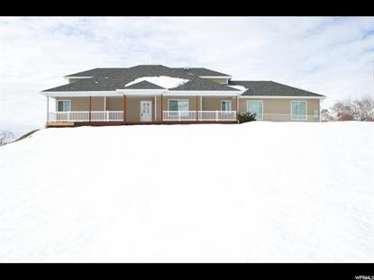 4785 POLE PATCH DR Pleasant View, UT MLS# 1430009