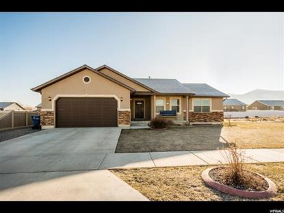 Utah Real Estate
