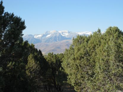 671 N BALD MOUNTAIN CIR (LOT 270)  Heber City, UT MLS# 1544051