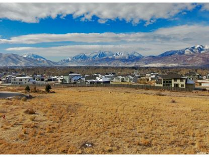 1580 N MOUNT NEBO CIR Heber City, UT MLS# 1714339