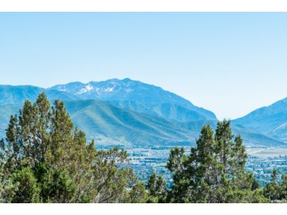 2993 E LA SAL PEAK DR Heber City, UT MLS# 1718532