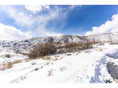 9233 SPOTTED OWL CT Park City, UT MLS# 1725831