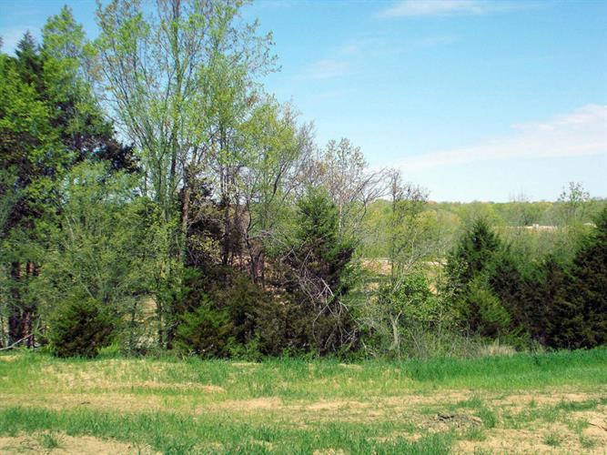 LOT 206 RUDCHESTER DR, Columbia, MO 65203