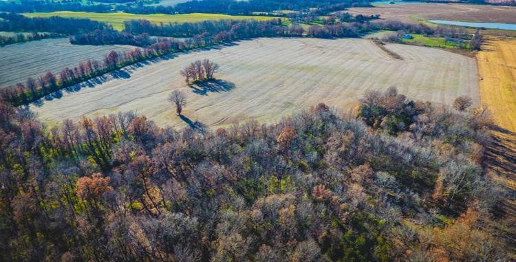 55 AC. COUNTY ROAD 215, Kingdom City, MO 65262